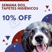 Você não pode perder a nossa semana de promoção! Corre pra cá e garanta os produtos do seu amigão! #promocao #petshop #pet #ahazou #tapetehigienico