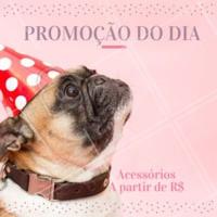 Não perca nossa promoção do dia e faça seu pet feliz! ❤️️ #pet #petshop #promocao #ahazou #amomeupet