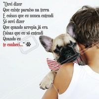 Quando você ouve aquela música romântica e só lembra do seu maior amor: seu dog! 🐶❤️️ #cachorro #ahazou #petshop #pets