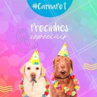 Vem curtir o Carnaval do melhor jeito: com promoção! 🎉😱 #promoçao #ahazou #pet