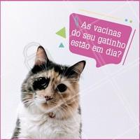 Vacinar é a melhor forma de prevenir que seu gatinho não pegue doenças (desde as menos sérias até as mais graves). É importante manter atualizadas as doses de vacina, vermífugo e antipulgas. Converse com seu veterinário de confiança e atualize as dose da vacina 💜! #ahazou #vacinas #consulta #veterinario #gatos