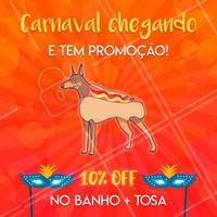 Não perca nossa promoção de carnaval e agende já o banho do seu peludo! #promocao #pet #ahazoupet #banhoetosa #petshop #carnaval