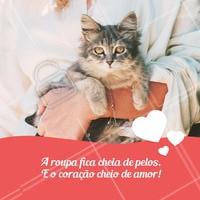 Vale a pena, né? ❤️ #gato #ahazou #pets
