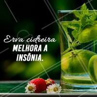 Uma dica para quem tem insônia, Chá de erva cidreira! #cha #dicas #ahazou #insonia