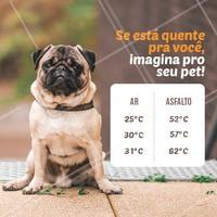 Olha a dica: caminhe com seu pet apenas no horário da manhã (antes das 10h) e no fim da tarde (depois das 16h). É preciso ter cuidado com a patinha deles! 🐾 #sol #ahazou #calor #pets #cachorro #verao
