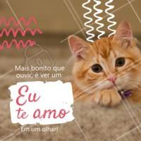Tem coisa melhor do que entender o que o olhar do seu pet quer dizer? E o melhor, que esse olhar diz muito sobre o que você também sente?  #muitoamor #petlove #ahazoupet