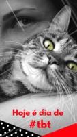 Compartilhe um momento especial com seu Pet!!! #ahazouapp #ahazoupet #pets #fofos #tbt