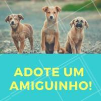 Quer um amiguinho? ADOTE ❤️️ Temos alguns pets disponíveis #pet #petshop #ahazou #adocao