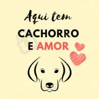 Puro amor! #pet #dog #ahazoupet #amor