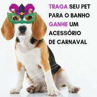 Traga seu pet para o banho e ganhe um acessório de Carnaval! ✨ #petshop #pet #carnaval #banho #ahazoupet #ahazou