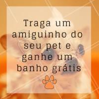 Quanto mais cachorros, melhor 🐶😍 Indique um amiguinho do seu pet, e ganhe um banho grátis para o seu peludo! #petshop #banhoetosa #ahazoupet #promo #indicacao #cachorro