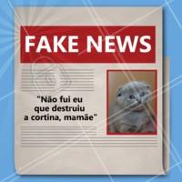 Logo eu, mamãe? Essa notícia só pode ser Fake News, em?!  😂 #fakenews #gatinho #ahazoupet