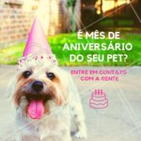 É mês de aniversário do seu pet? Entre em contato com a gente para saber o que temos de presente para ele ❤️️ #petshop #ahazoupet #ahazou #presente #mesdeaniversario #aniversario