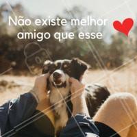 Não existe! ❤️️ #pet #ahazoupet #ahazou #melhoramigo #cachorro #amigo