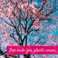 É preciso plantar coisas boas para colher frutos maravilhosos.❤️️ #gratidao #ahazou #frases #motivacional