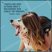 ❤️ #pets #ahazou #maedepet