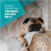 Seu pet está com as vacinas em dia? Isso é muito importante para que ele tenha uma vida longa e saudável, não deixe para depois, cuide do seu pet com todo o amor e carinho que ele merece. #pet #ahazoupet #amor #cuidados #vacina