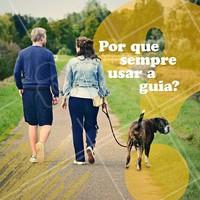 Mesmo seu peludo sendo obediente, infelizmente não conseguimos garantir que ele não terá uma reação inesperada caso aconteça algo fora do normal (como um acidente, um rojão ou qualquer outra situação que possa deixar nosso bichinho assustado). Por mais adestrado que seu pet seja, ele pode acabar fugindo ou se envolver em um acidente ao se deparar com uma situação que cause medo. #pet #dogs #guia #ahazou #passeios #dogwalker #dicas