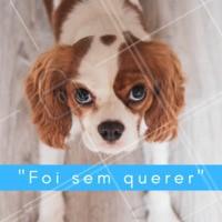 Seu pet também faz essa carinha? 😂 #pet #ahazou #cachorro #engraçado