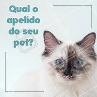 E aí? Coloca aqui nos comentários como você chama seu pet! 👇 #ahazoupet #pet #animais #animal #petshop #ahazou #veterinario