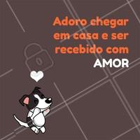 Amor que não cabe no peito!!!  #pets #ahazou #frases #amor