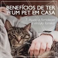 Tem coisa melhor do que ter um bichinho em casa? ♥️ #pet #animais #beneficios #ahazoupet #animaldeestimacao