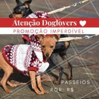 Que tal aproveitar essa promoção especial e dar um pouquinho de alegria ao seu dog 🐶? Aproveite, essa promoção é por tempo limitado! #pet #ahazou #dog #doglovers #Dogwalker