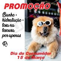 Aproveite o Dia Mundial do Consumidor e traga seu pet para se cuidar!🐶🐱 #pet #banho #tosa #ahazou #diadoconsumidor #promocao