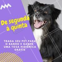 Aproveite nossa promoção! Você não vai querer largar o seu pet de tão cheiroso que ele vai voltar 😍 #petshop #ahazoupetshop