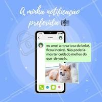 Ah, tem notificação mais gratificante que essa? 😍 Nós AMAMOS cuidar com muito carinho do seu pet. 🐶 #notificacaopreferida #feedback #tophits #ahazou #petlovers #amocachorros #pet