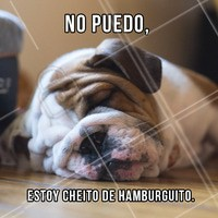 Nada mal usar essa desculpa comendo nosso hambúrguer, né!? 🍔🍔🍔 #hamburguer #ahazou #meme #gastronomia