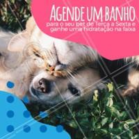Notícia boa pro seu pet? TEMOS! 🐶 #petlovers #pet #ahazoupet #promocao