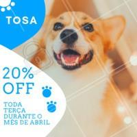 🚨 PROMOÇÃO DE ABRIL 🚨 um desconto super especial para o seu pet! Às segundas têm promoção de 20% na tosa. Agende seu horário ☎ #banhoetosa #ahazoupet #pet