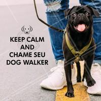 Sem tempo pra andar com seu amigo? Pode me chamar! 🐶 #dogwalker #ahazoupet #cachorro
