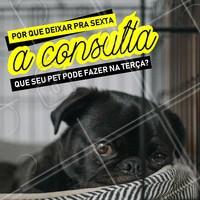 Ah pra que esperar até sexta-feira? 😕 Bora agendar o horário do seu pet! 🐶 #pet #vet #ahazoupet #petlovers #veterinario