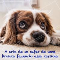 Que coisa mais fofa! Quem aguenta? 😘 #pets #ahazoupet #cachorro