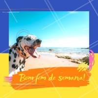 Quem vai curtir o fim de semana com seu PET deixa um gostei! 🐶 #fimdesemana  #ahazoupet #cachorro #pet