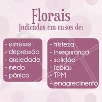 Você sabia que os florais podem ser utilizados para diversas questões emocionais? Cuide de você, conheça os florais! #florais #terapiacomflorais #ahazou #terapias #saude #bemestar