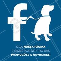 Já seguiu nossa página? Por lá postamos promoções, dicas e novidades que você vai amar! #pet #ahazoupet #pets #animais #amocachorro