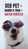 Esse match é sempre um sucesso! 🔥 #matchperfeito #ahazoupet #banhoetosa #petshop