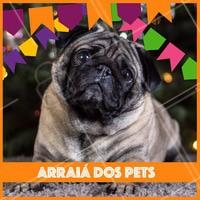 Olha o arraiá dos pets aí! Traga seu pet para aproveitar nossos cuidados e curtir essa festa de São João 🎉  #pets #ahazoupets #pet #saojoao #festajunina