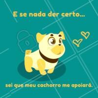 Quem mais também conta com um cãopanheirinho para toda hora? 🐶🧡🐾 #frase #cachorro #ahazoupet #amocachorro #petlovers #caopanheiro