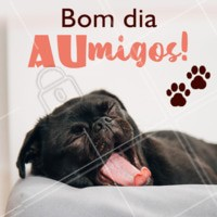 Bommm dia 🐶 #bomdia #ahazoupet #pets