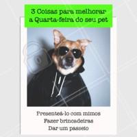 Hoje é dia de mimar muito o sue pet! 😻 #petshop #ahazoupet #pelovers #quartafeira