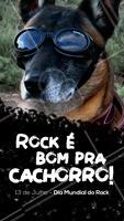 Seu pet tem jeito de que ouve qual tipo de rock? Conta pra gente! Feliz Dia do Rock! #rock #pet #music #ahazou #ahazourock #ahazoupet #diadorock