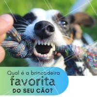 Conta pra gente! 👇👇 #enquete #ahazou #cachorro #pet