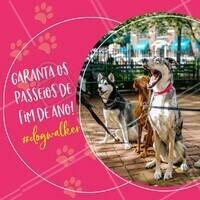 Fim de ano já está aí, então corre para garantir os passeios do seu pet até o fim de ano!🎅🏼 #pet #ahazoupet #dogwalker #fimdeano