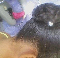 Fiz um rabo de cavalo no topo da cabeça com uma trança unica e bem simples torci a trança e fiz um coque bailarina. coloquei um mimo cintilante em um só lado. cabeleireiro(a)