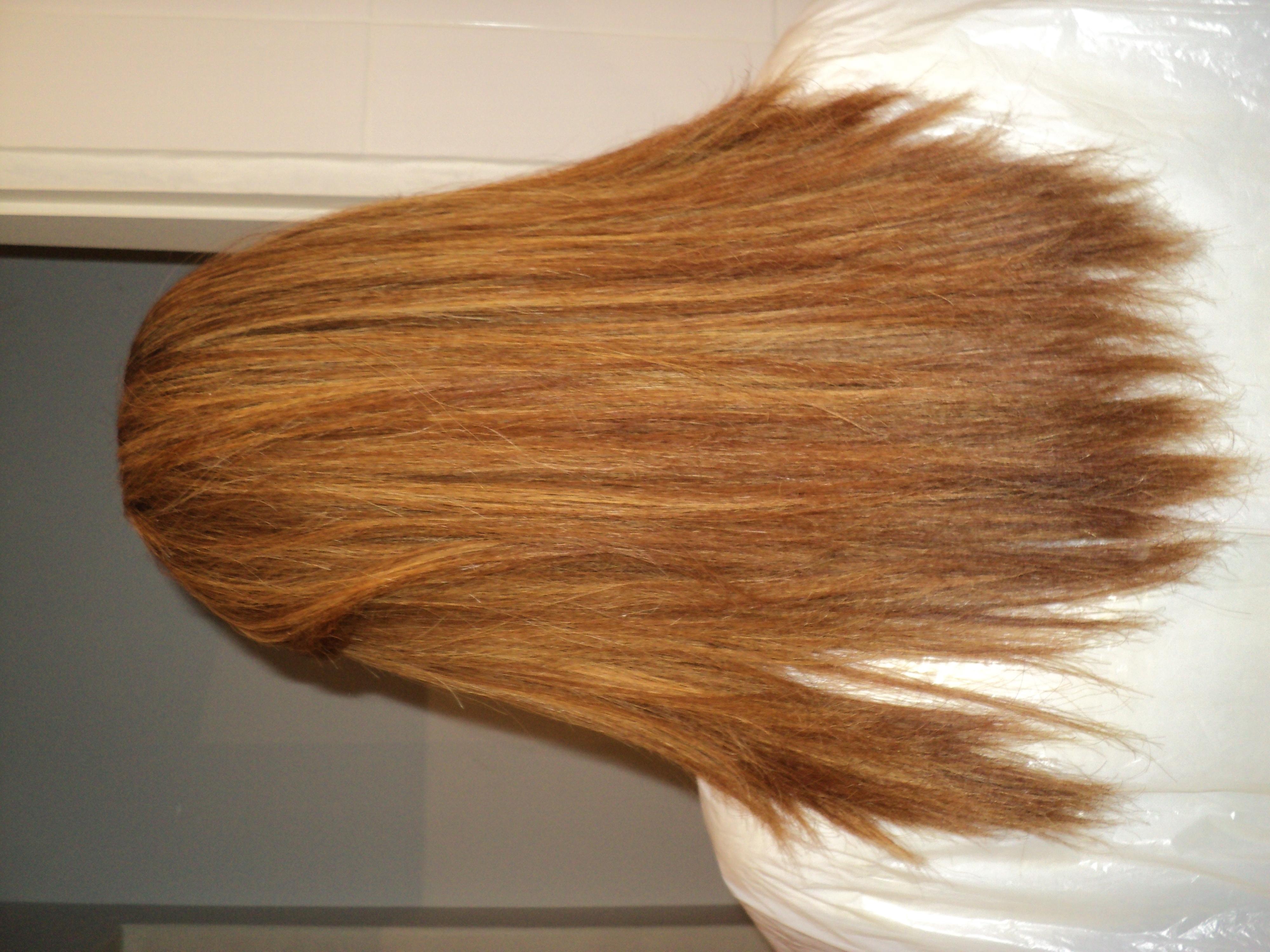 Progressiva e o antes das duas fotos anteriores auxiliar cabeleireiro(a) auxiliar administrativo
