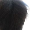 progressiva para cabelos afro( antes)